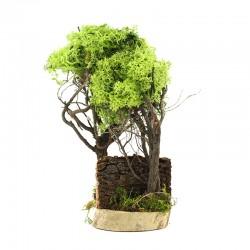 Lichen tree for nativity scene 15 cm