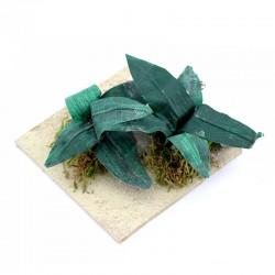 Aloe plants in the desert for DIY nativity scene 9x9 cm