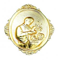 Confraternity Medallion St. Lewis 8x10 cm