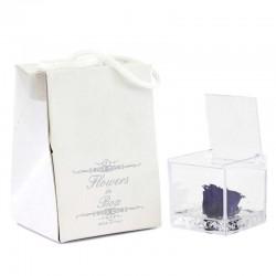 Cubo plexiglass Rosa blu stabilizzata 5x5x5 cm
