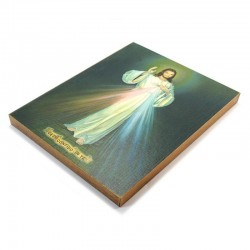 Merciful Jesus Picture on printed canvas 30x40 cm