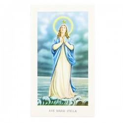 Immagine Madonna Ave Maris Stella con preghiera 6x11 cm pz 100