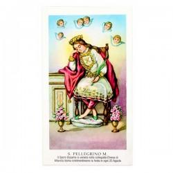 Immagine San Pellegrino con preghiera 6x11 cm pz 100