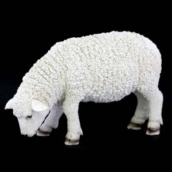 Sheep with low head grazing in colored resin 38x25 cm