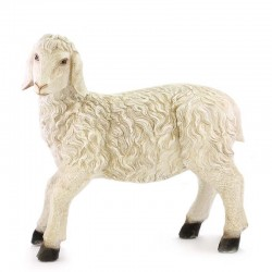 Sheep with high head for crib in colored resin 55x58 cm