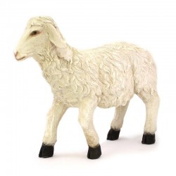 Sheep with high head for crib in colored resin 65x56 cm
