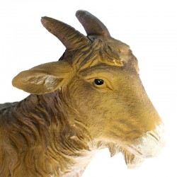 Goat with high head for crib  in colored resin 68x58 cm