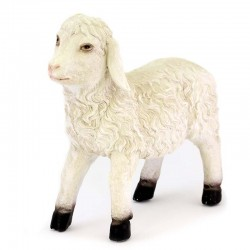 Sheep with high head for crib in colored resin 48x45 cm