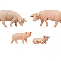 Family of pigs in resin 4 pcs 12 cm Fontanini cribs