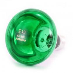 Lampada colorata Verde 60W E27