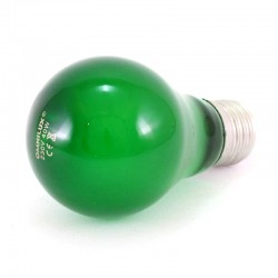 Lampadina colorata verde 40W E27